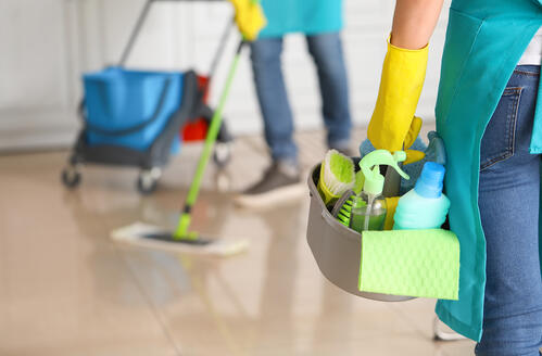 cleaner carries products